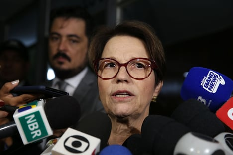 Tereza Cristina planeja encontro com embaixadores árabes
