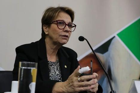 Importação de carne brasileira é liberada pelos EUA