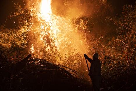 Governo autoriza envio da Força Nacional para áreas de queimadas