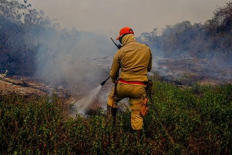 Governo do Mato Grosso confirma uso de retardante de fogo
