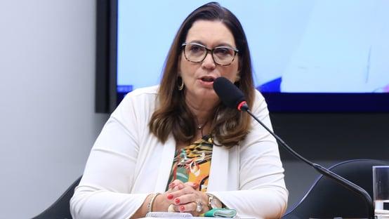 Bia Kicis culpa Barroso
