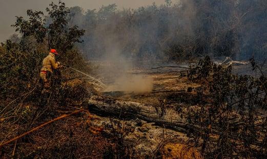 Bolsonaro volta a proibir uso de fogo por 120 dias na Amazônia e no Pantanal