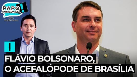 Flávio Bolsonaro, o acefalópode de Brasília