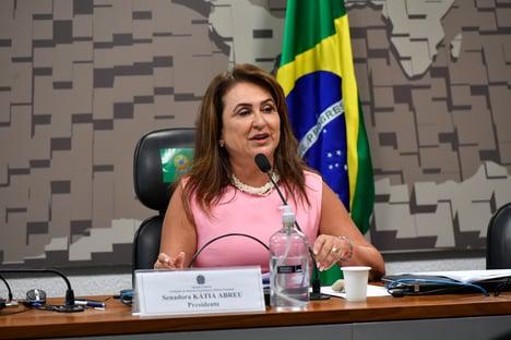 Ernesto quis simular saída honrosa para seu grupo extremista', diz Kátia Abreu