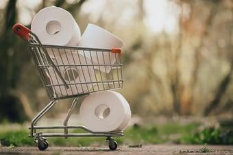 IMAGEM: Empresa canadense quer fazer papel higiênico com bambu