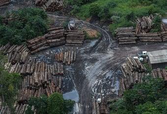 IMAGEM: Kátia Abreu sugere que desmatamento e Salles atrapalharam negociações com EUA