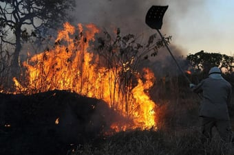 IMAGEM: Agosto tem mais de 28 mil focos de calor na Amazônia