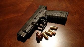 IMAGEM: Registro de armas quase dobra e bate recorde em 2020