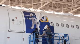 IMAGEM: MP pede que TCU apure se houve gasto inútil com avião do Zé Gotinha