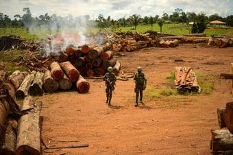 IMAGEM: CGU mantém caixa-preta bilionária das multas ambientais das Operações Verde Brasil