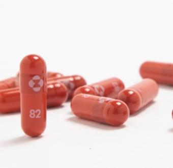 IMAGEM: MSD pedirá à Anvisa autorização para uso de remédio contra Covid