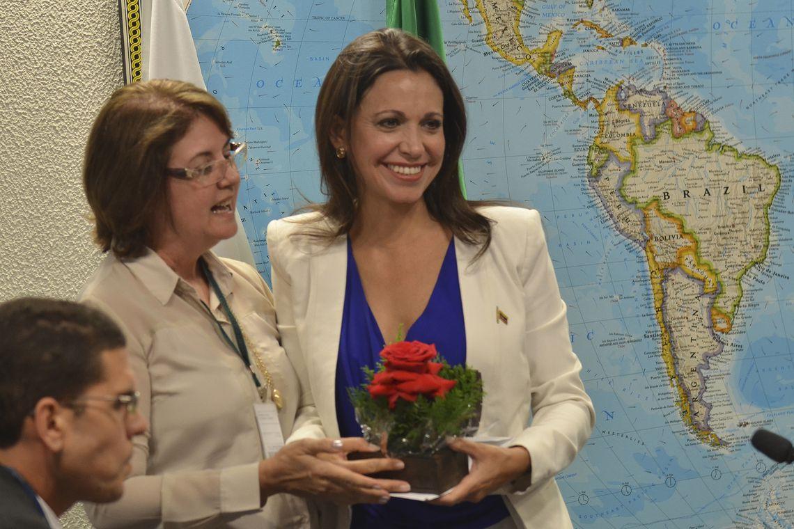 IMAGEM: Guaidó nomeia embaixadora para o Brasil