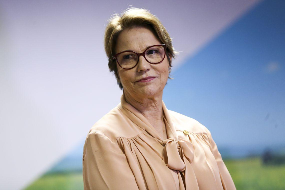 IMAGEM: Tereza Cristina diz que Brasil consegue manter abastecimento de alimentos apesar da pandemia