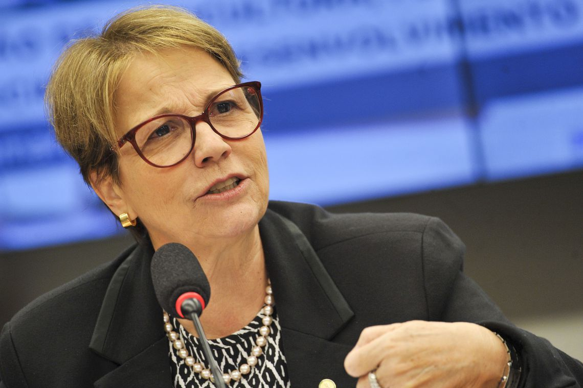 IMAGEM: Brasil importará arroz dos EUA e da Tailândia, diz Tereza Cristina