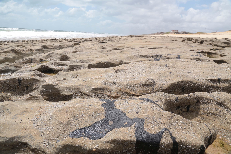 IMAGEM: Dez toneladas de óleo retiradas de praias em Ilhéus