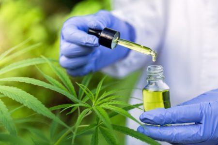 IMAGEM: Mendonça envia a deputados 'nota de repúdio' a projeto sobre Cannabis medicinal