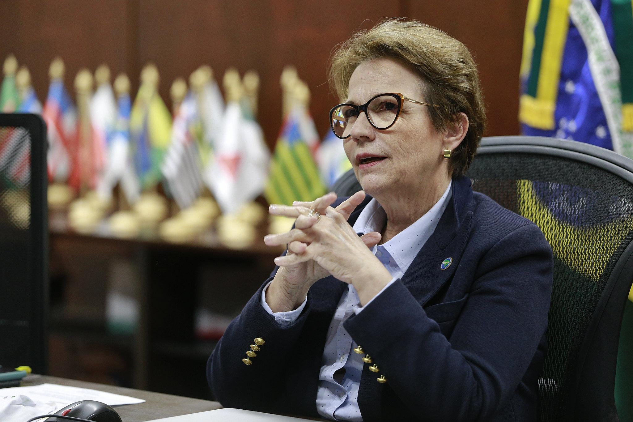IMAGEM: Comissão do Senado convida Tereza Cristina para informar sobre pecuária no Pantanal