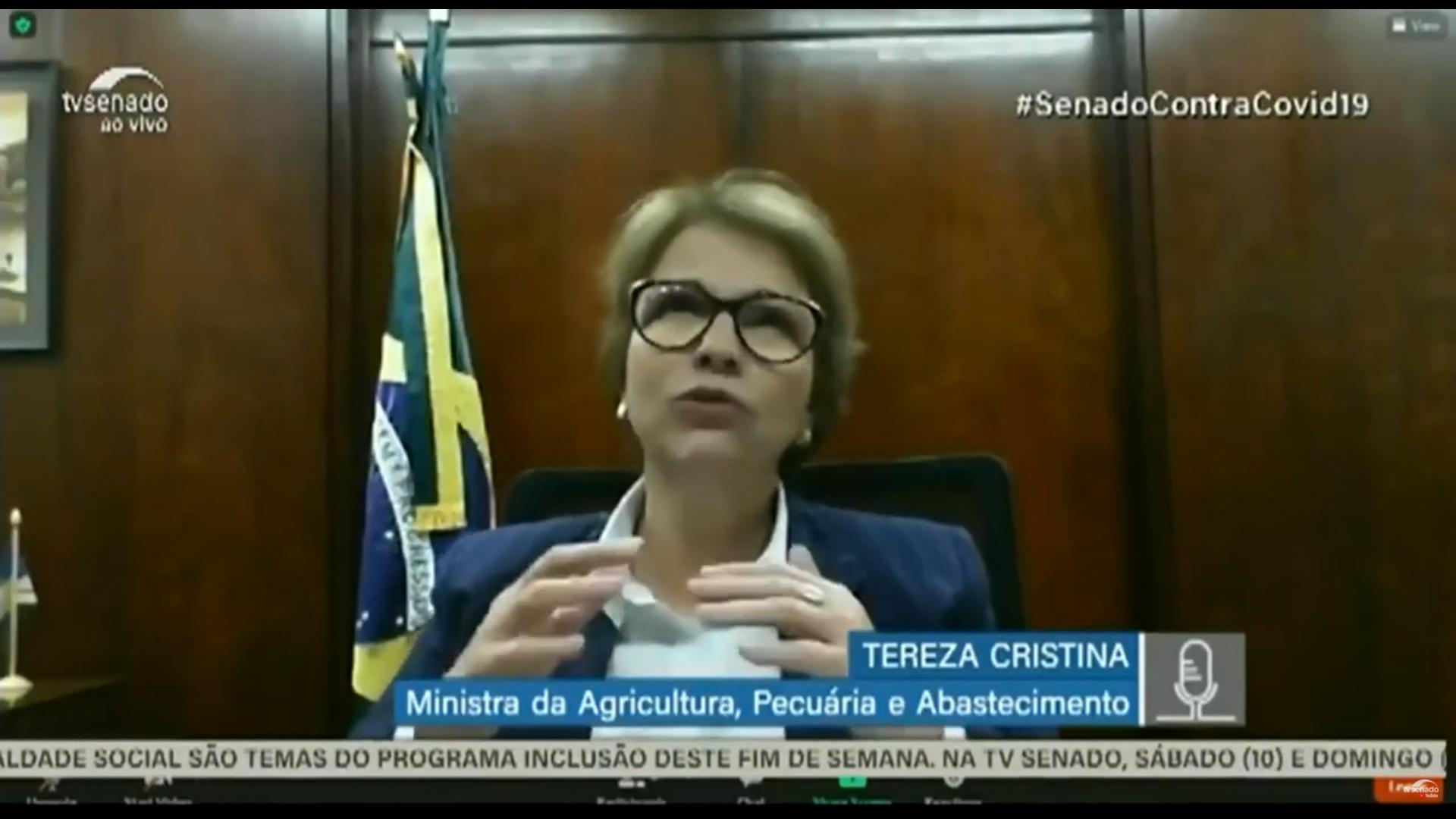 "IMAGEM: Tereza Cristina e o ""boi bombeiro"""