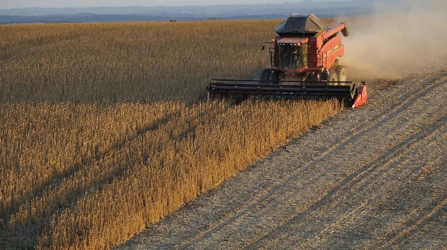IMAGEM: China tenta cancelar acordos sobre compra de soja dos EUA