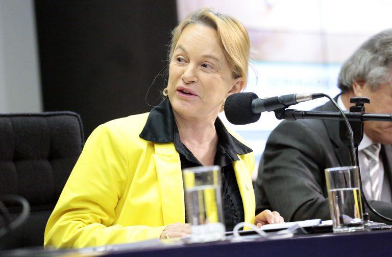 IMAGEM: URGENTE: deputada do PL assume relatoria do caso Silveira no lugar de tucano