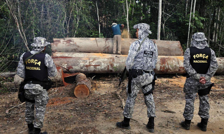 Ministério da Justiça autoriza Força Nacional na Amazônia até 2022