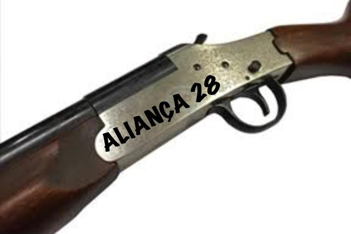 IMAGEM: Se abrigar Bolsonaro, PRTB poderá passar a se chamar Aliança 28