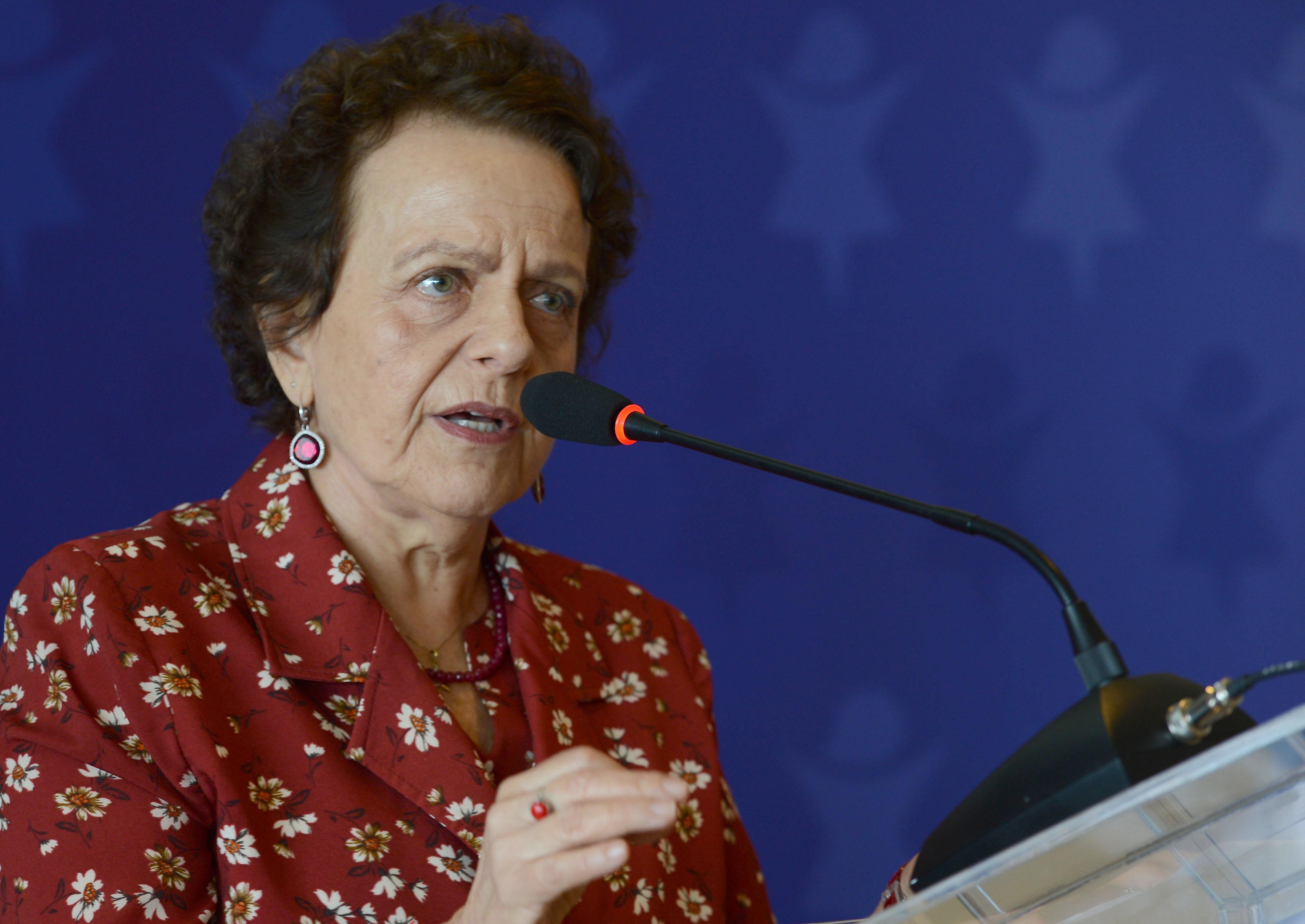 IMAGEM: Comissão da reforma eleitoral discute participação de mulheres e minorias
