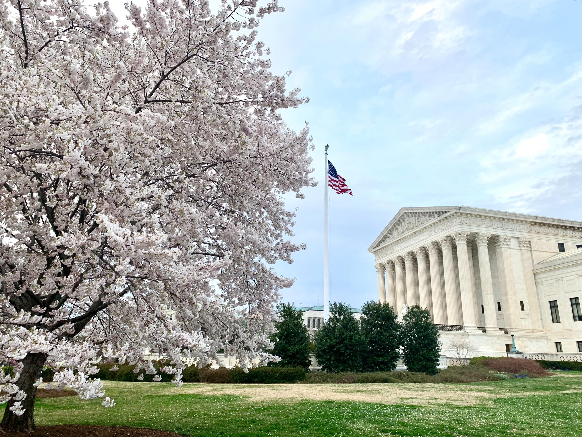 IMAGEM: Suprema Corte dos EUA defende direito de agência católica de não aceitar pais adotivos gays
