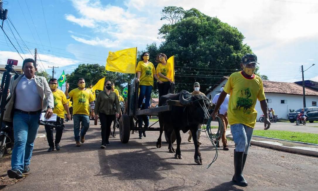 IMAGEM: Damares Alves participa de 'bufalociata' no Pará