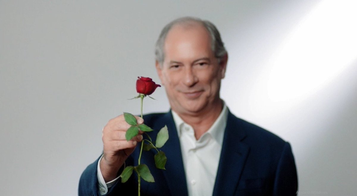IMAGEM: PDT no 12 de setembro: 'Trago esta rosa para te dar'