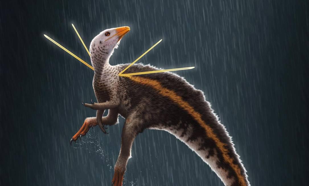 IMAGEM: Museu alemão se recusa a devolver fóssil de dinossauro do Brasil